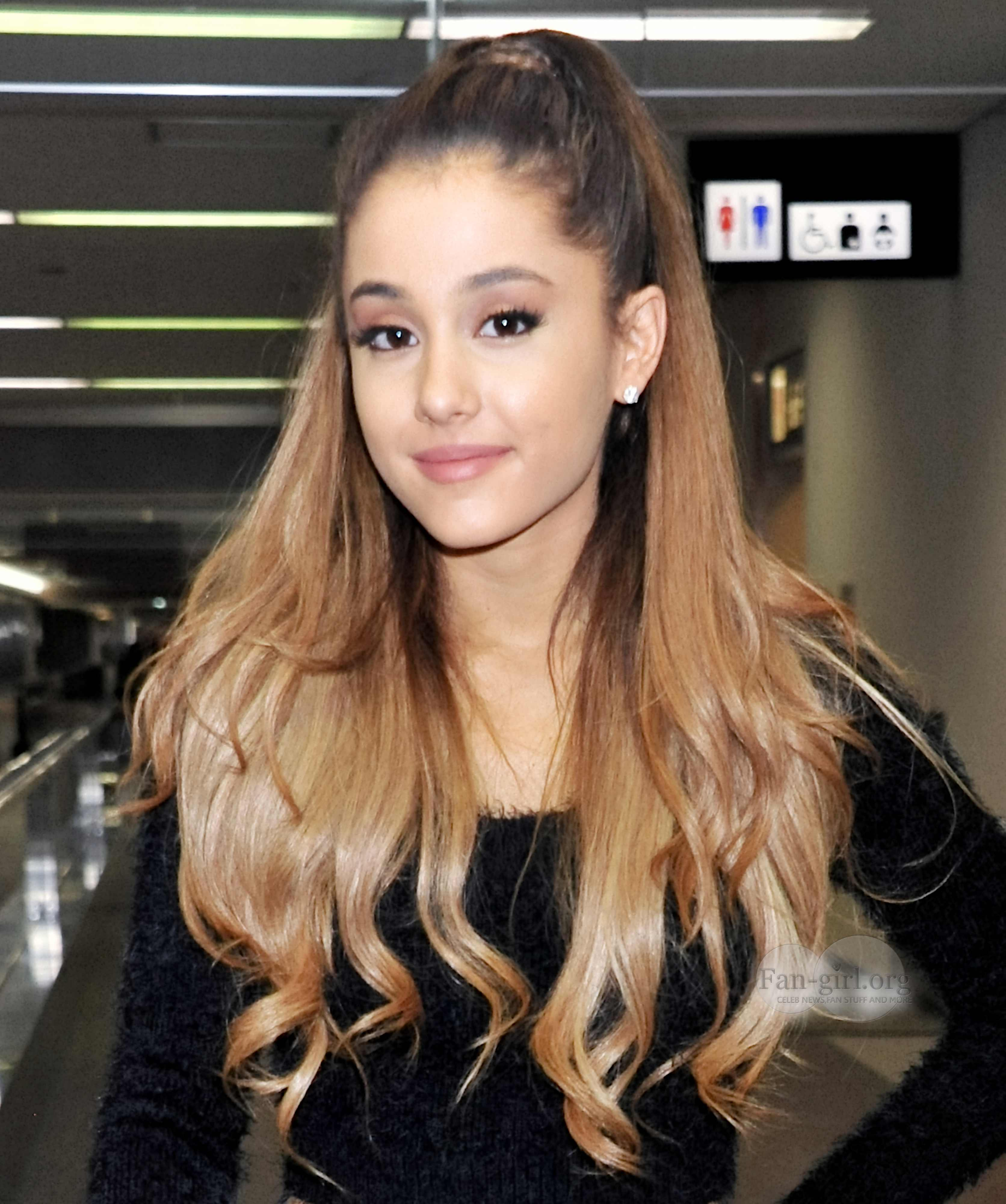 Ariana grande hair color name