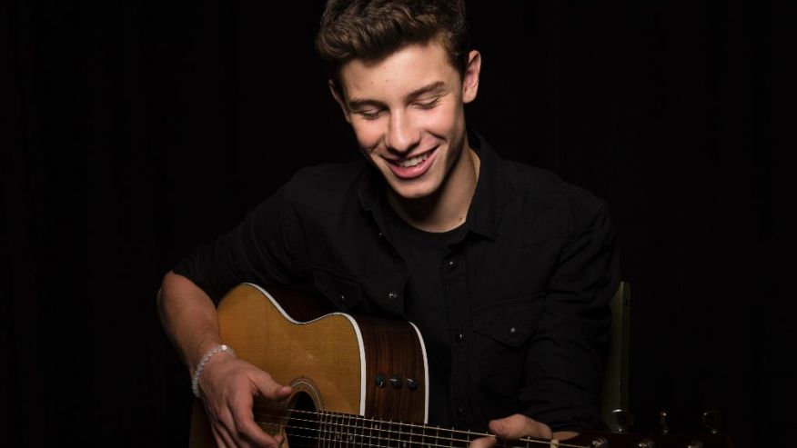 What Do You Mean cover shawn mendes justin bieber