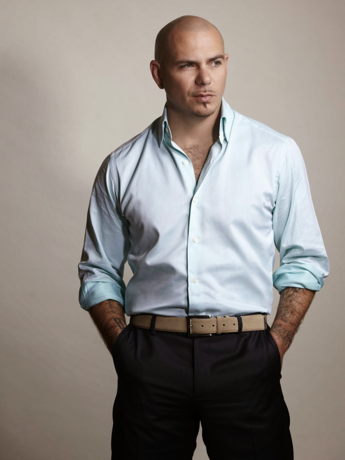 fotos de pitbull 10