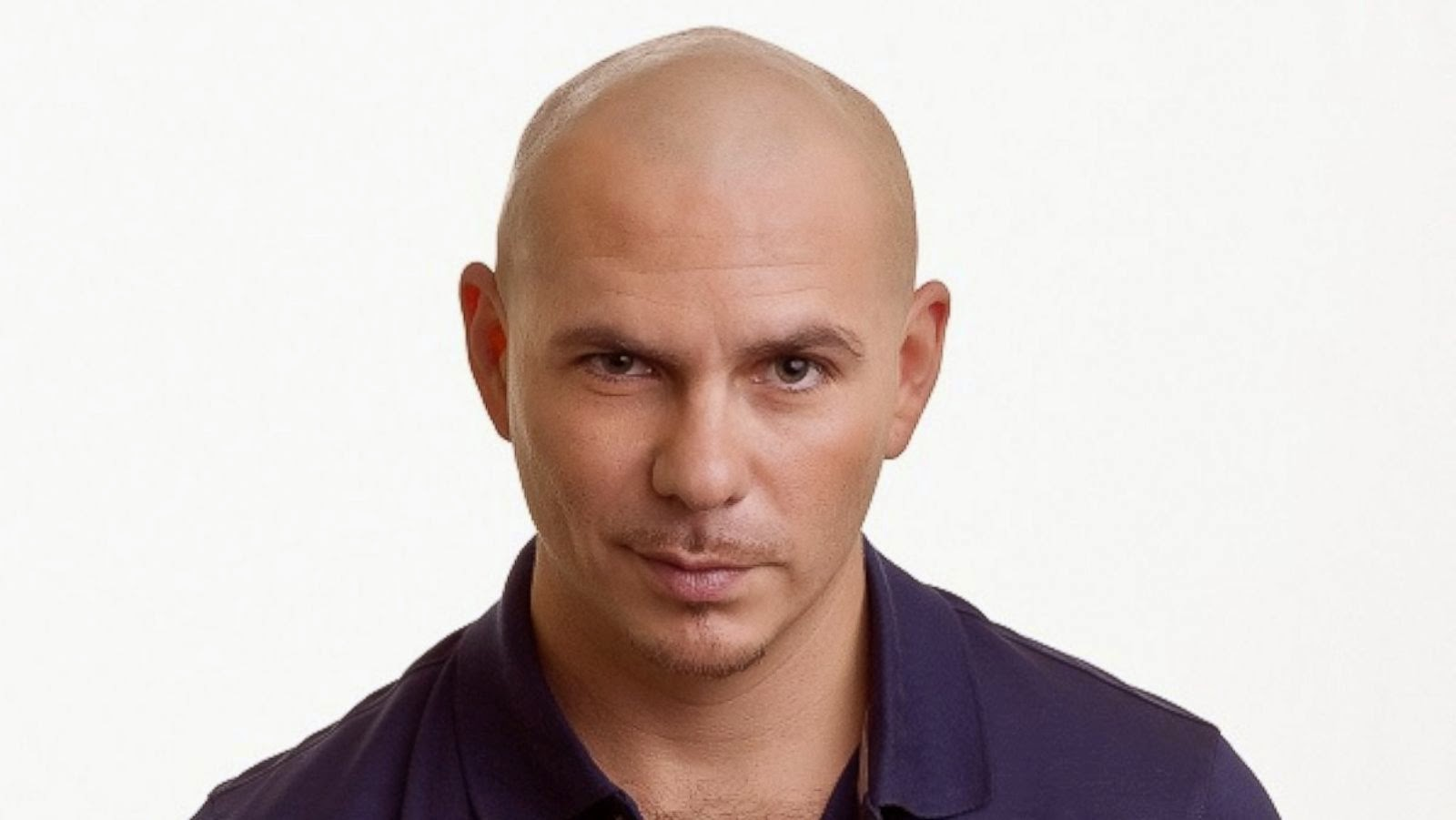 fotos de pitbull 14