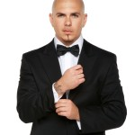 fotos de pitbull
