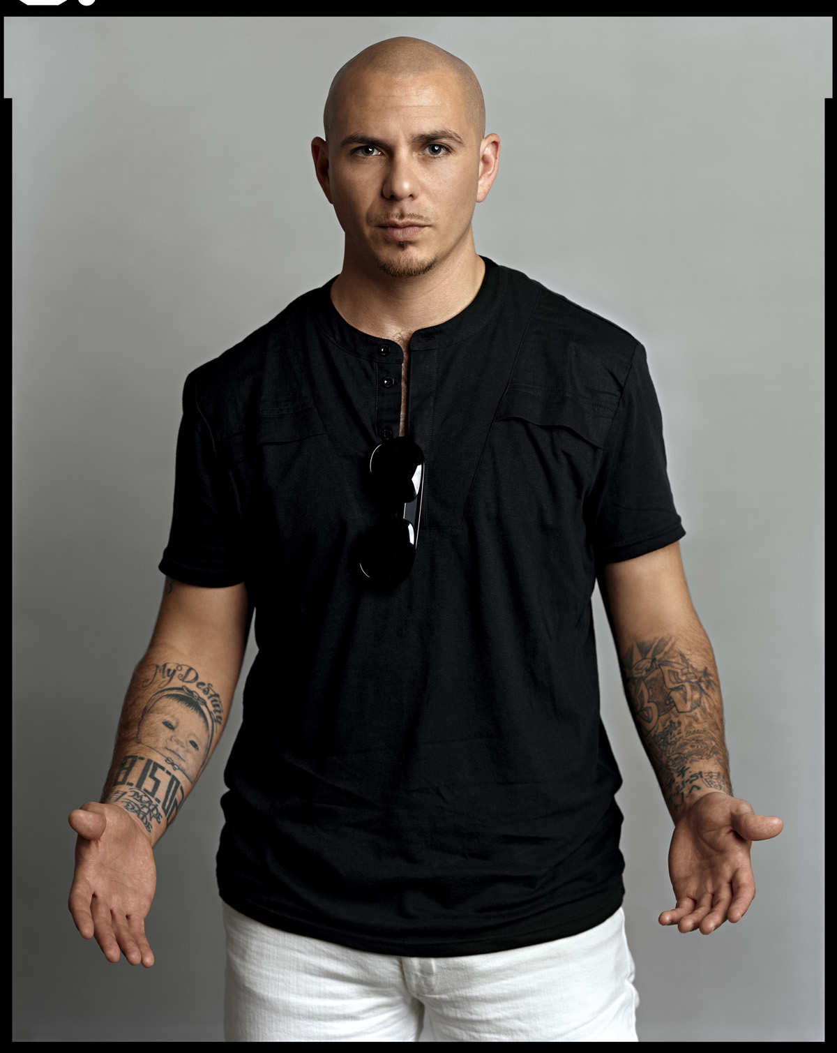 fotos de pitbull 6